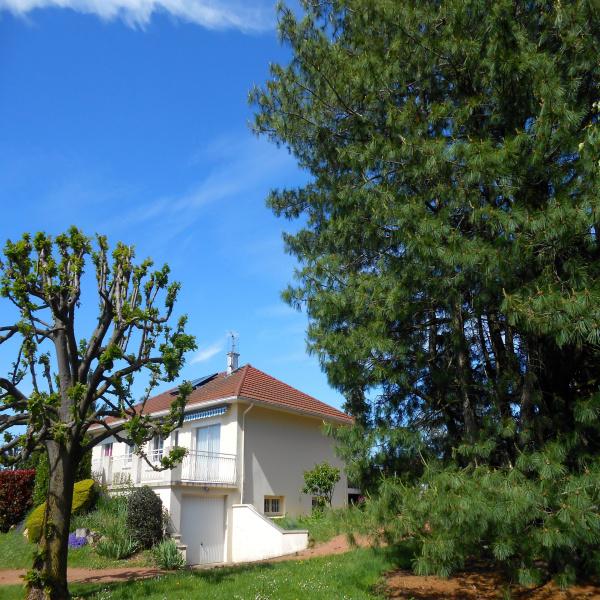 Offres de vente Maison Saint-Pierre-la-Noaille 42190
